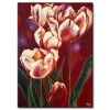 Tulip Khoe Sắc M1235