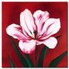 Hoa Ly Khoe Sắc M0482